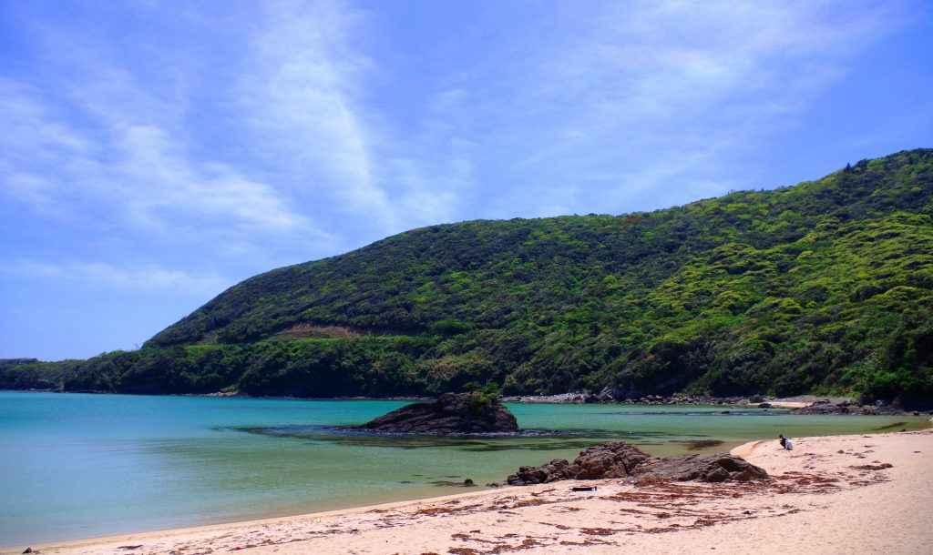 Tsushima island ps4
