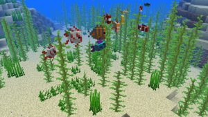 A selection of the tropical fish that can now be found in Minecraft as part of the Update Aquatic