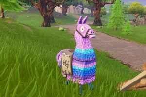 common llama spots in fortnite
