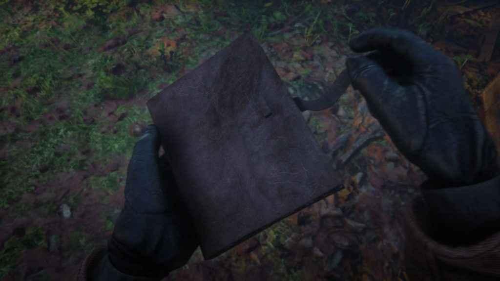 Read Dead Redemption 2 - Arthur's Journal is worth reading.
