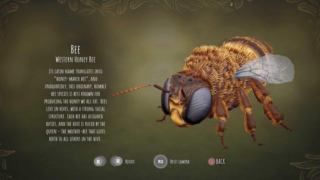 Bee Simulator PS4 Review 4