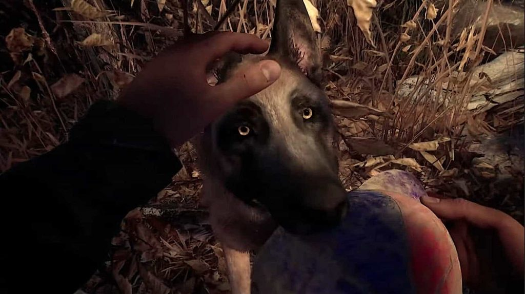 Blair Witch PS4 Review 3