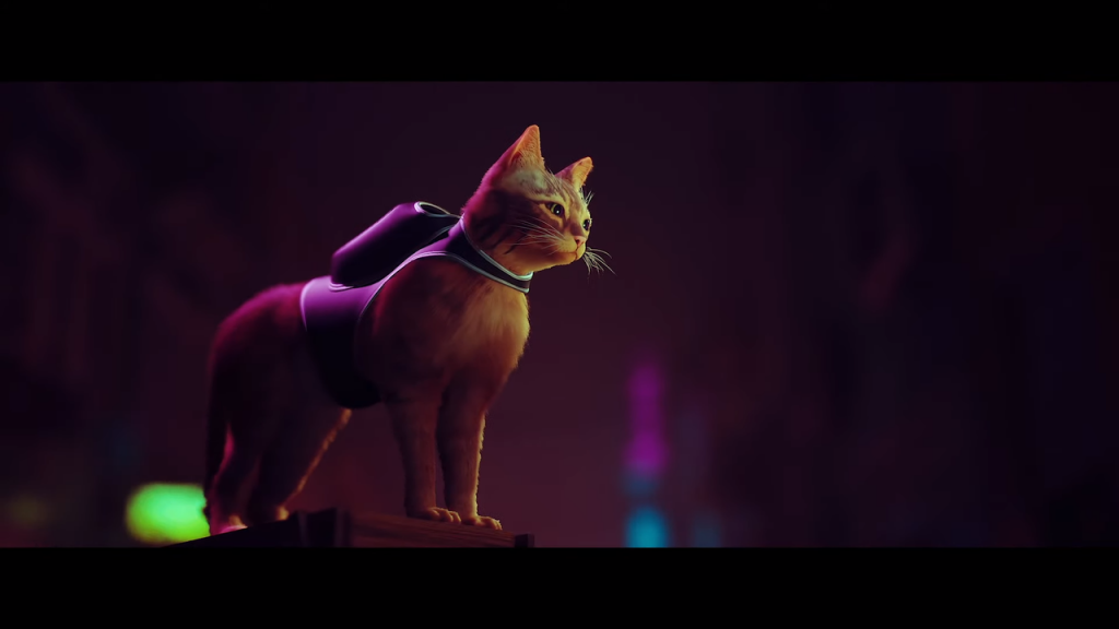 STRAY is the game about a cat you didn't know you wanted