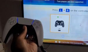 the-dualsense-controller-will-work-with-the-nintendo-switch