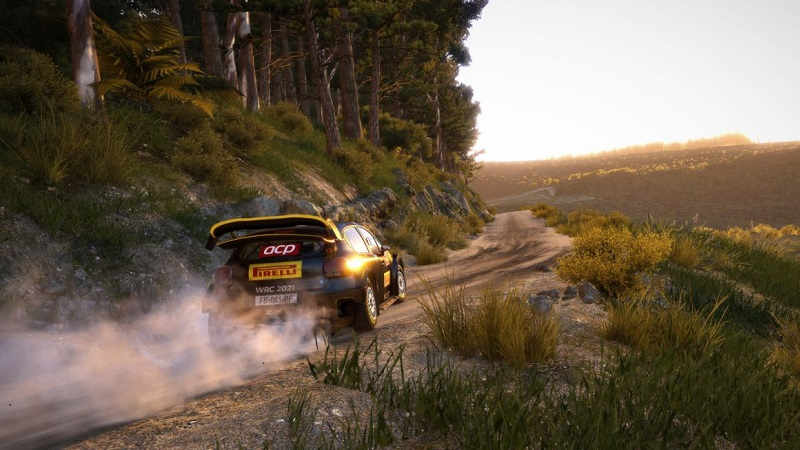 WRC 9 PS5 Review 1